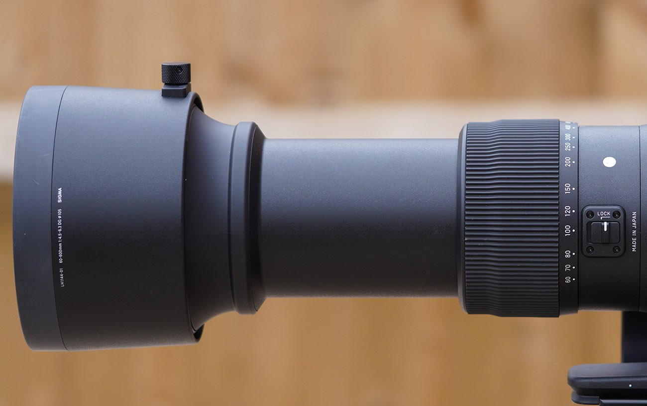 sigma 60-600 review zoom and lens hood