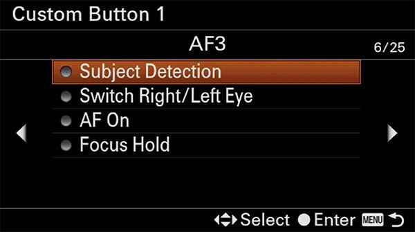 sony a6400 animal eye af custom button af3