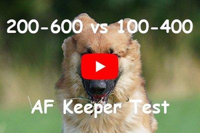 sony 200-600 vs 100-400 autofocus keeper test