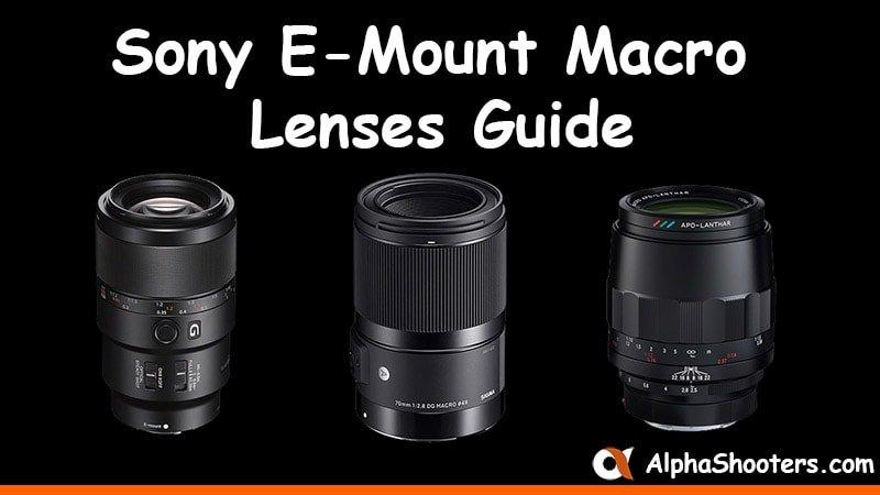 Sony E-mount Macro Lenses