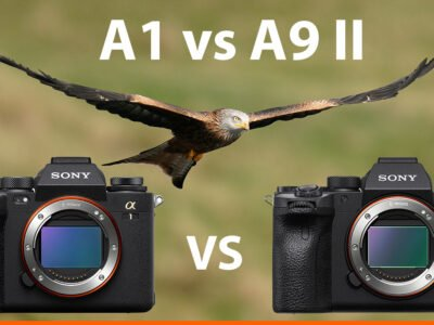 Sony a1 vs a9ii