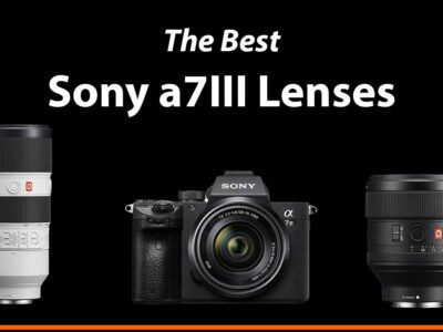 The Best Sony a7III Lenses Guide