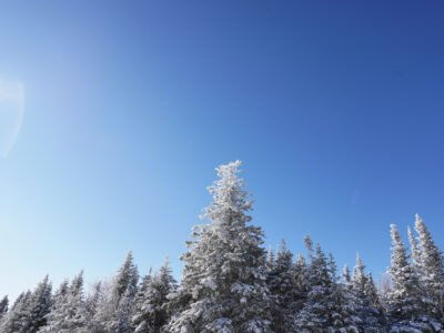 Snow and blue skies