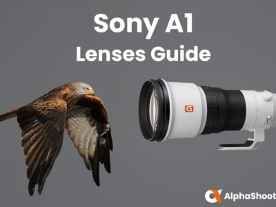 Sony A1 Lenses Guide