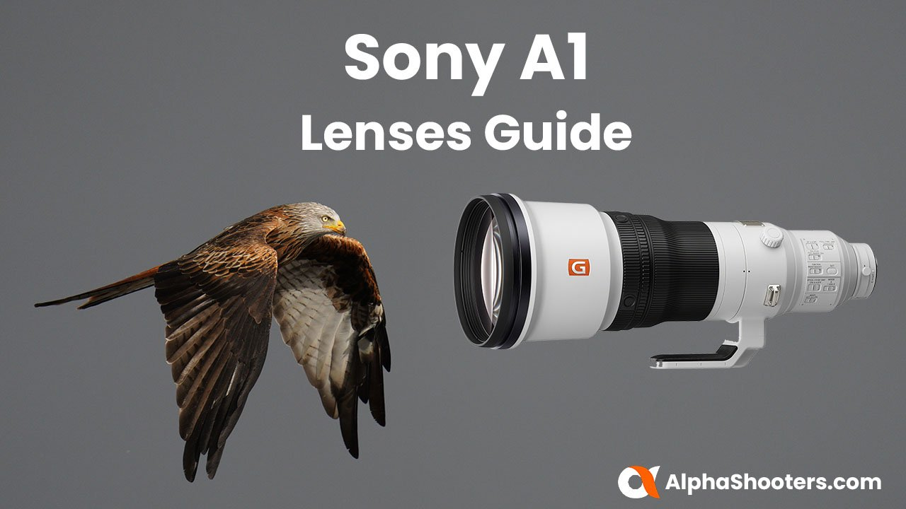Sony A1 Lenses Guide