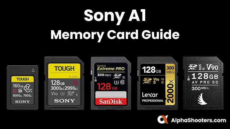 Sony A1 Memory Card Guide