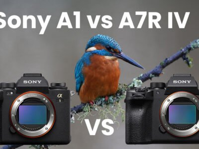 Sony A1 vs A7R IV